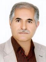 ناصر میزبانی